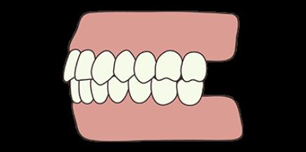 healthy-bite-concept